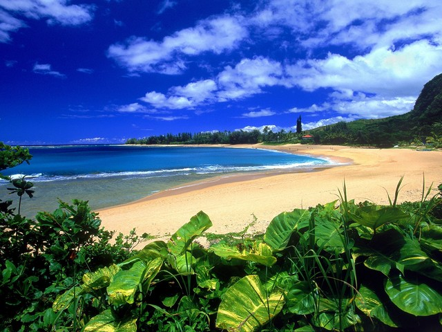 Haena-beach_-kauai_-hawaii