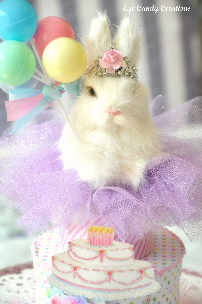 Birthdaybunny4