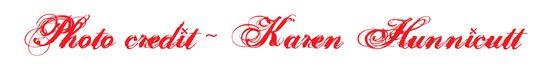 Karenhunnicutt1